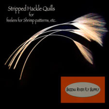 Stripped Hacked Quills
