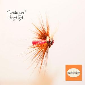 Destroyer Bright Light Fly - Jaap Kalkman SS